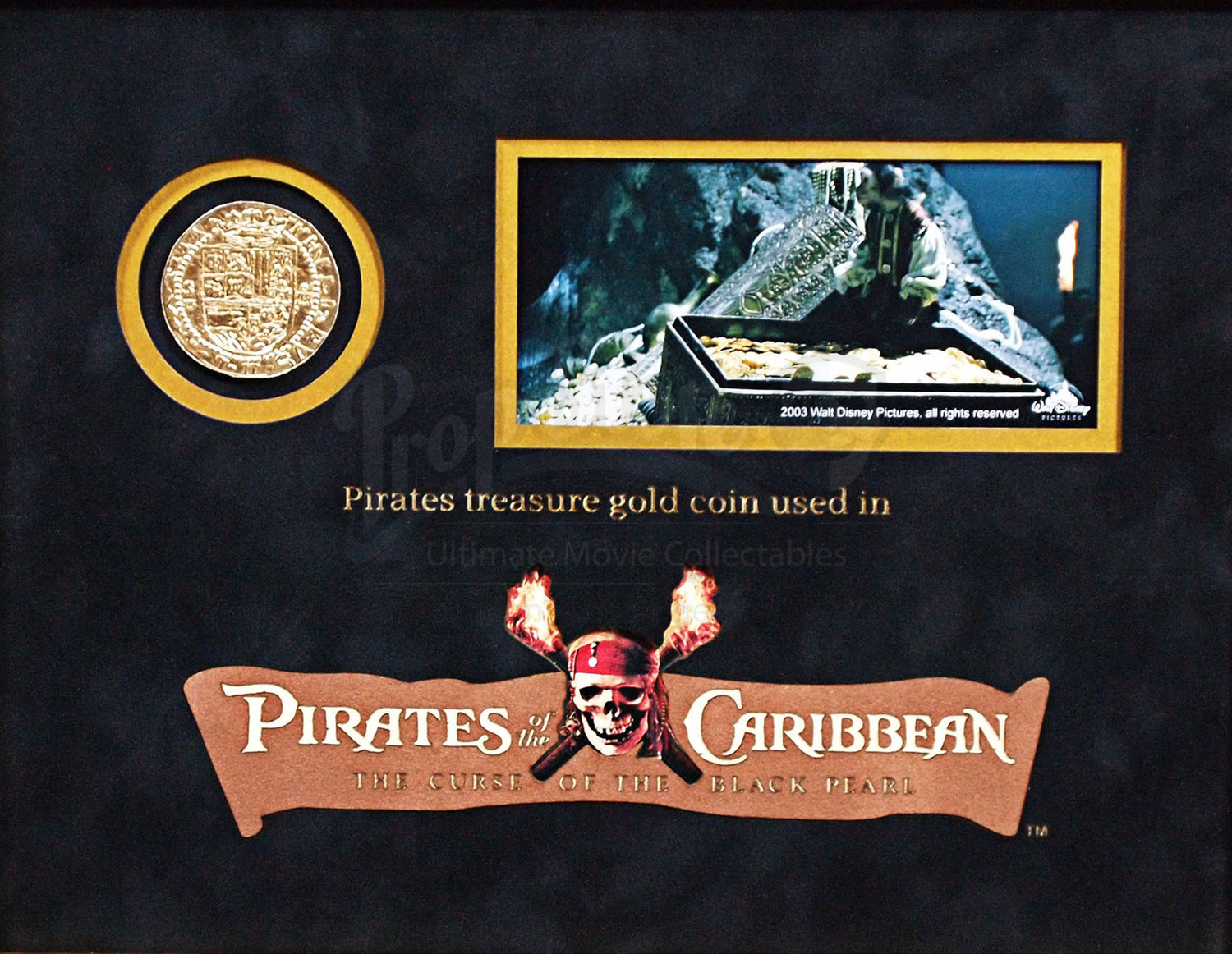 Pirate Gold Coin Display Prop Store Ultimate Movie