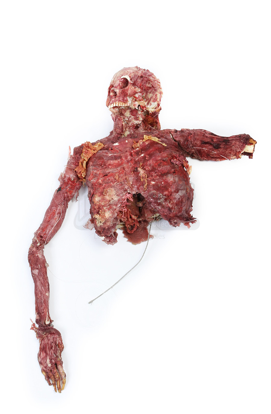 eye-gouged victims upper body
