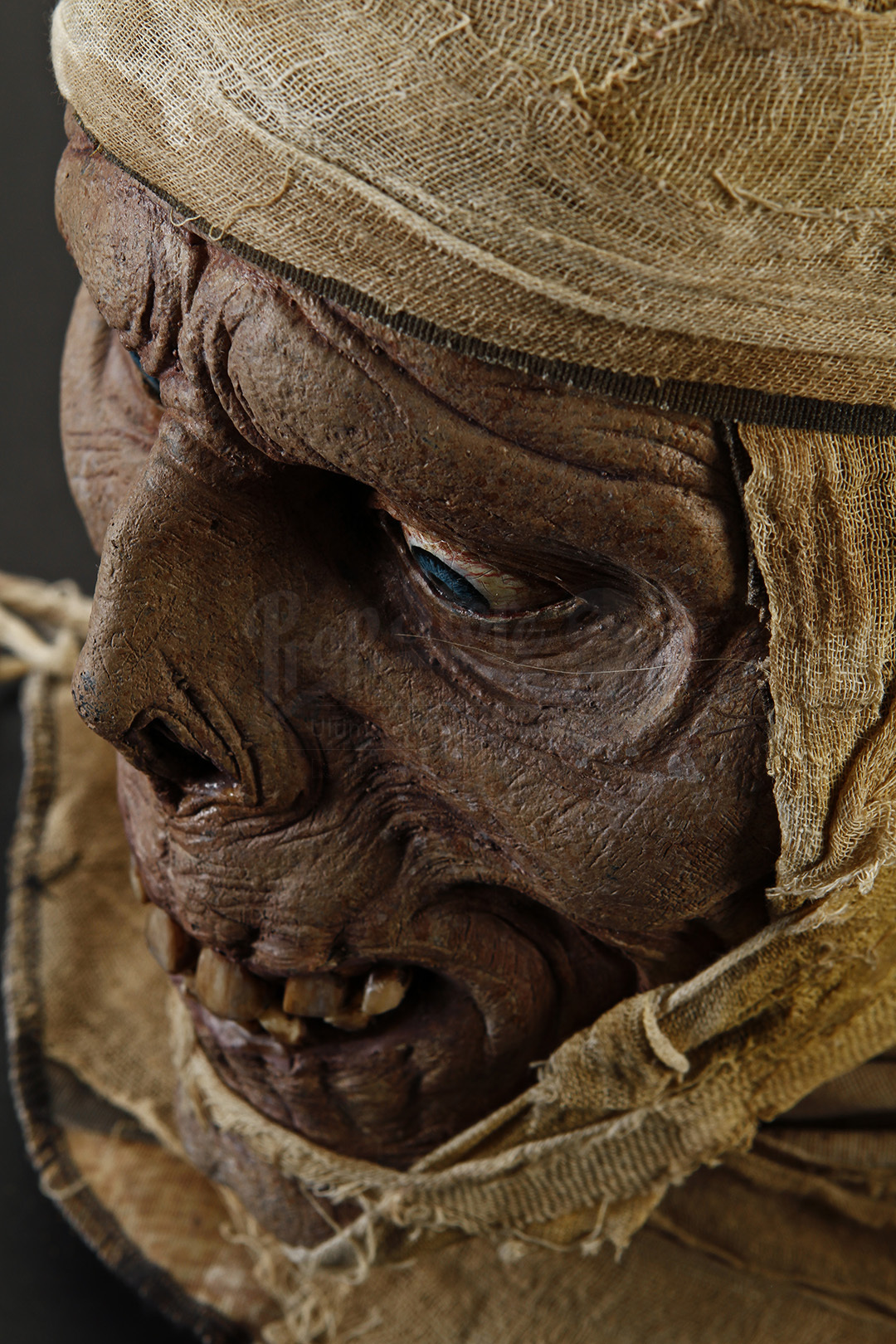 Mummy Head Bust Prop Store Ultimate Movie Collectables